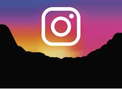 Julie's Bloomies Instagram